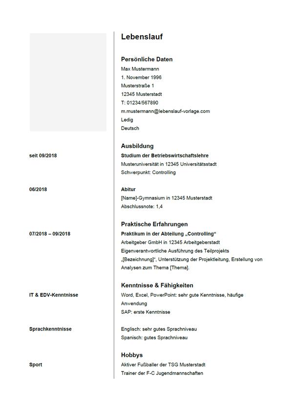 Vorlage / Muster: Lebenslauf 5
