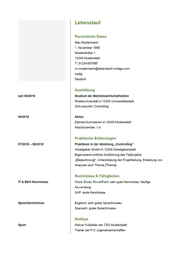 Vorlage / Muster: Lebenslauf 8